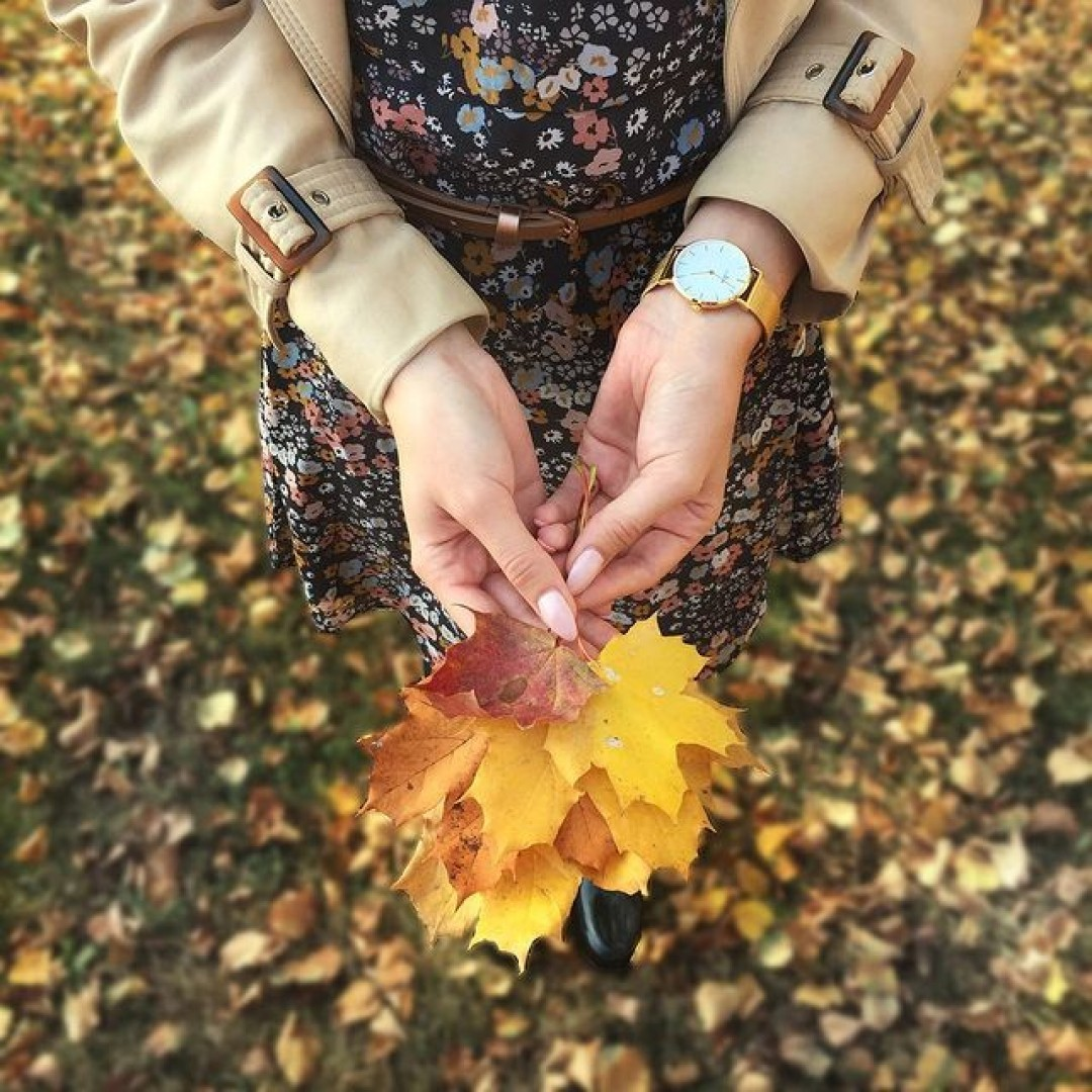 Happy Herbst - Wer sammelt auch so gerne bunte Blätter? 🍁😍